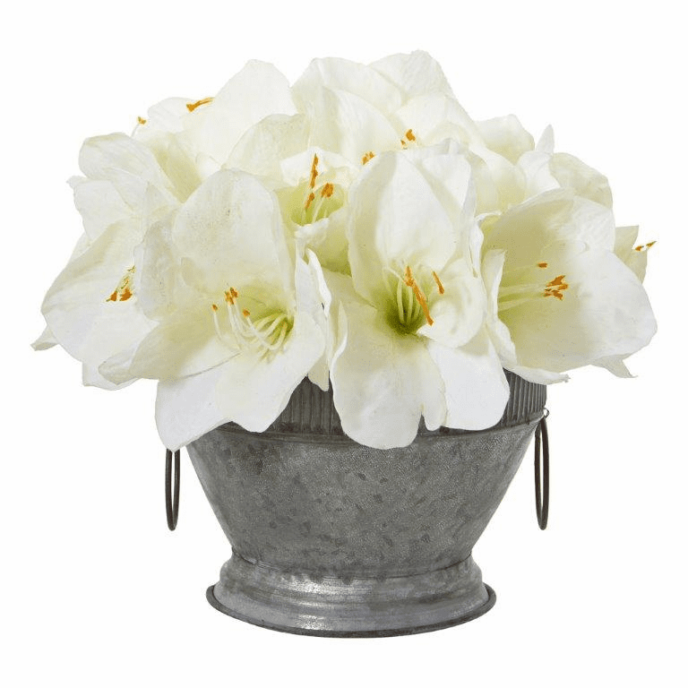 """10"""" Amaryllis Arrangement in Vintage Bowl with Copper Trimming - White"""