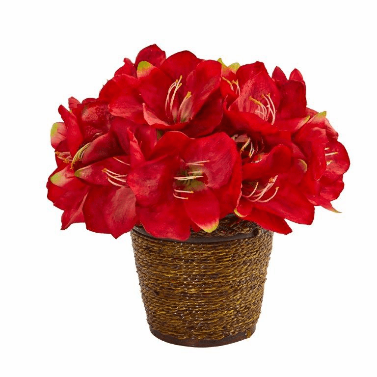 "12"" Amaryllis Artificial Arrangement in Basket - Red"