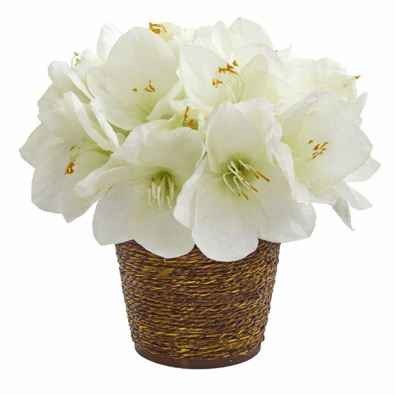 "12"" Amaryllis Artificial Arrangement in Basket - White"