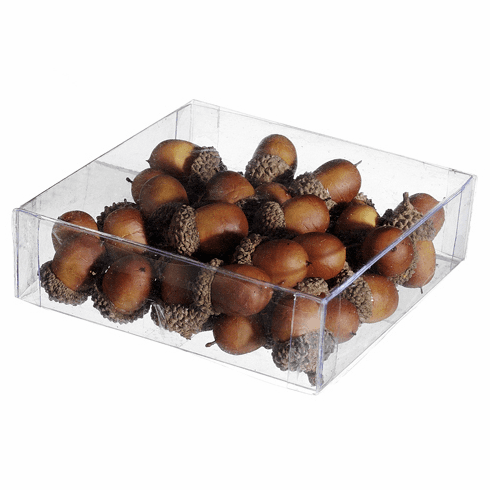 Artificial Assorted Acorn in Acetate Box - 12 Boxes