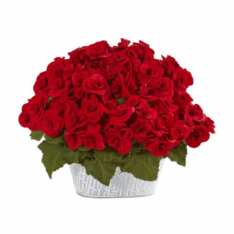 "11"" Begonia Artificial Arrangement in Decorative Planter - Red"