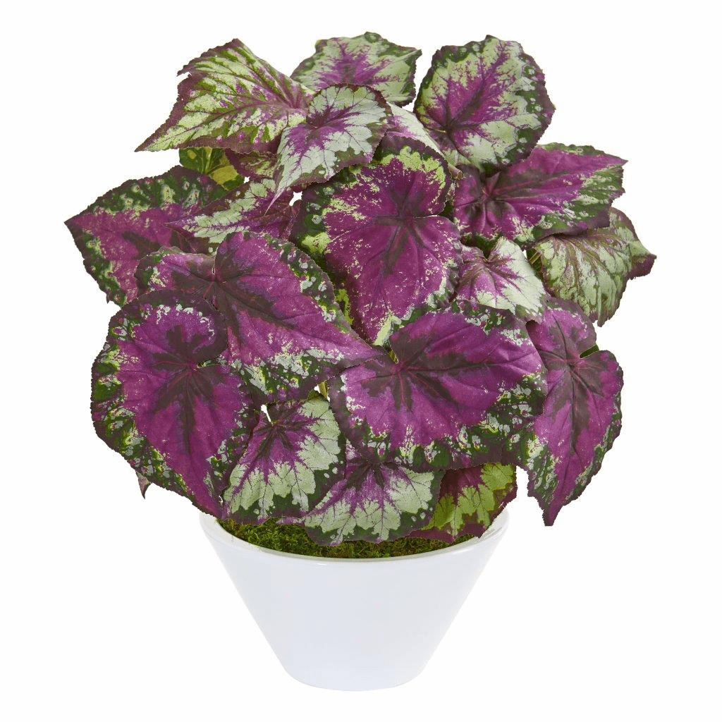 """19"""" Begonia Artificial Plant in White Vase"""