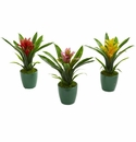 """10"""" Bromeliad Artificial Plant in Green Planter (Set of 3)"""