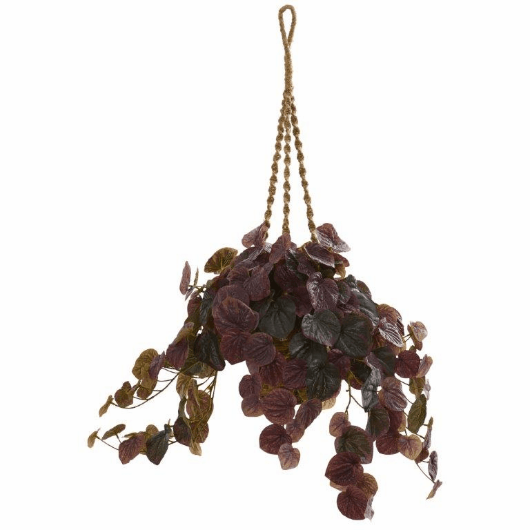 34� Burgundy Peperomia Artificial Plant in Hanging Basket (Real Touch)