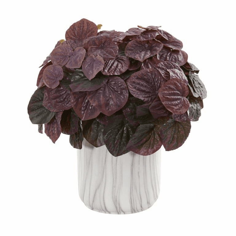 """14"""" Burgundy Watermelon Peperomia Artificial Plant in Marble Finished Vase (Real Touch)"""