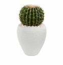 "20"" Cactus Artificial Plant in White Planter"