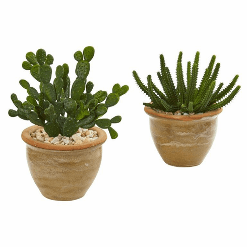Cactus Succulent Artificial Plant in Ceramic Vase (Set of 2)