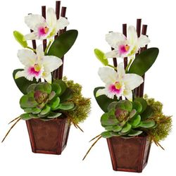 """14.75"""" Cattleya Orchid and Succulent Arrangement (Set of 2) - White"""