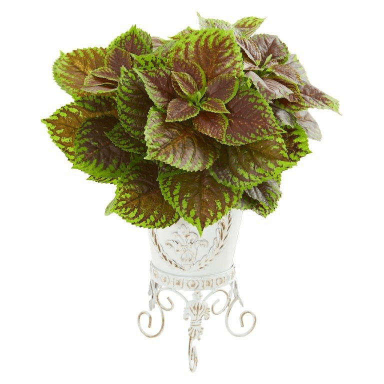 """19"""" Coleus Artificial Plant in White Planter (Real Touch)"""
