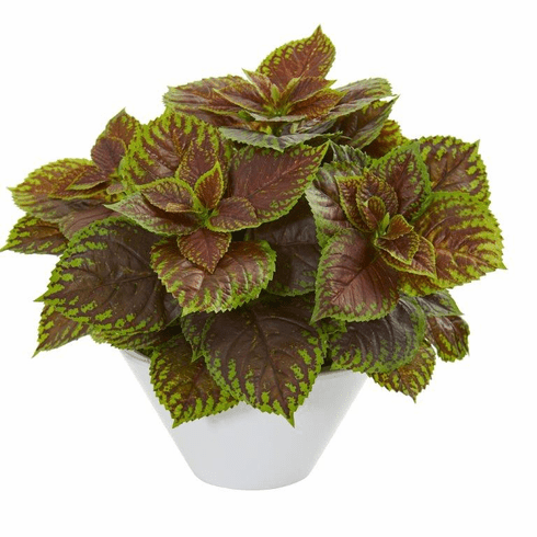 Coleus Artificial Plant in White Planter (Real Touch)
