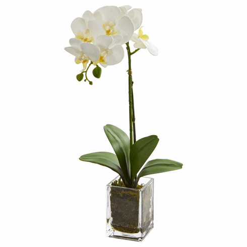 "24"" Cream Orchid Phalaenopsis Artificial Arrangement in Vase"