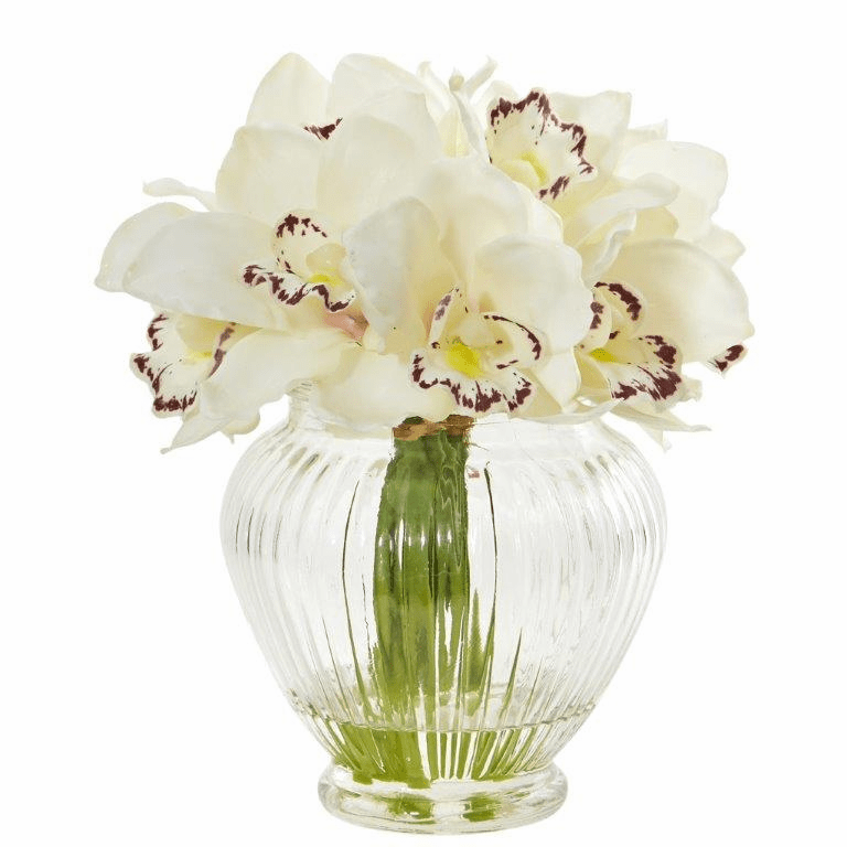"9"" Cream Cymbidium Orchid Artificial Arrangement in Glass Vase"
