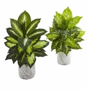 "20"" Dieffenbachia Artificial Plant in Marble Finish Planter (Set of 2)"