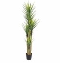 7' Dracaena Artificial Plant