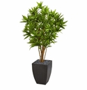 5' Dracaena Artificial Tree in Black Planter