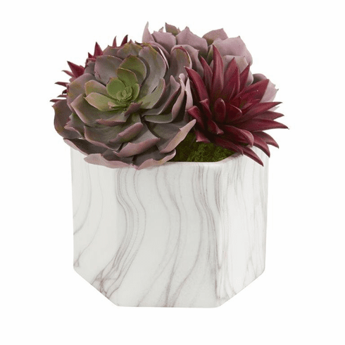 Echeveria and Spike Agave Succulent Artificial Plant in Marble Vase