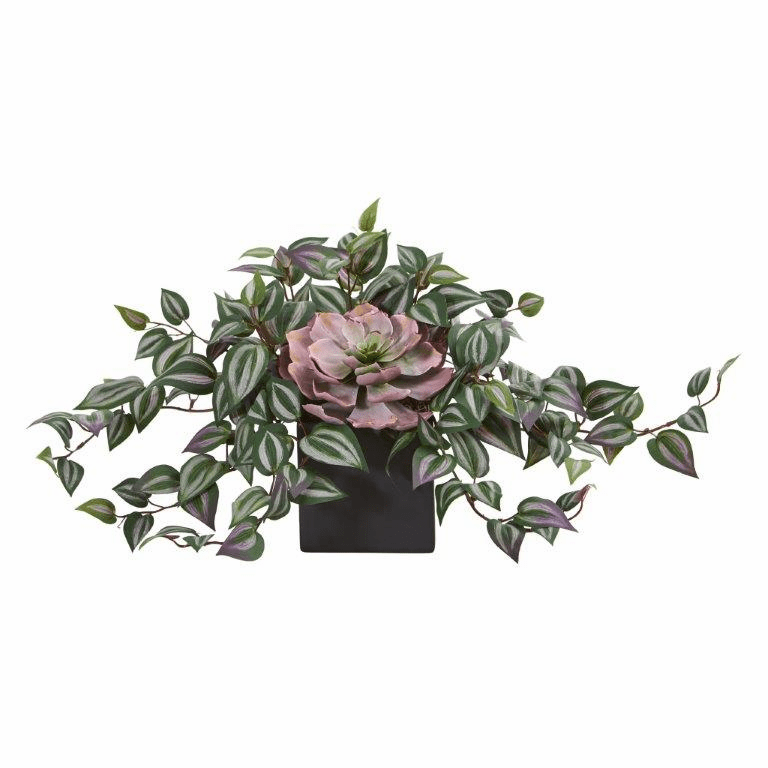 "11"" Echeveria and Wandering Jew Artificial Plant in Black Vase"