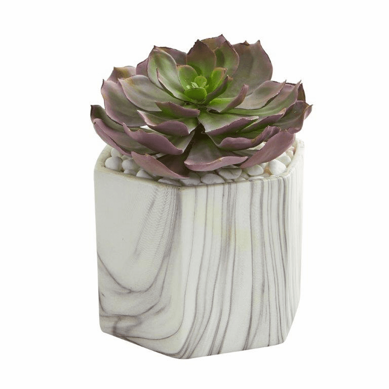 "8"" Echeveria Succulent Artificial Plant in Marble Vase"