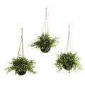 "9"" Artificial Eucalyptus, Maiden Hair & Berry Hanging Basket (Set of 3)"
