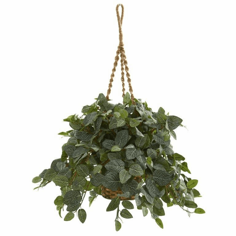 "34"" Fittonia Artifical Plant in Hanging Basket"