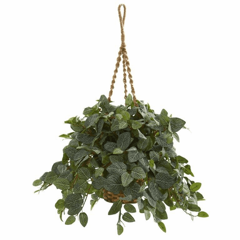 """34"""" Fittonia Artifical Plant in Hanging Basket"""