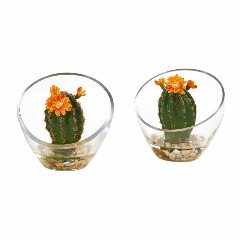 "6"" Flowering Cactus Artificial Plant in Glass Vase (Set of 2)"