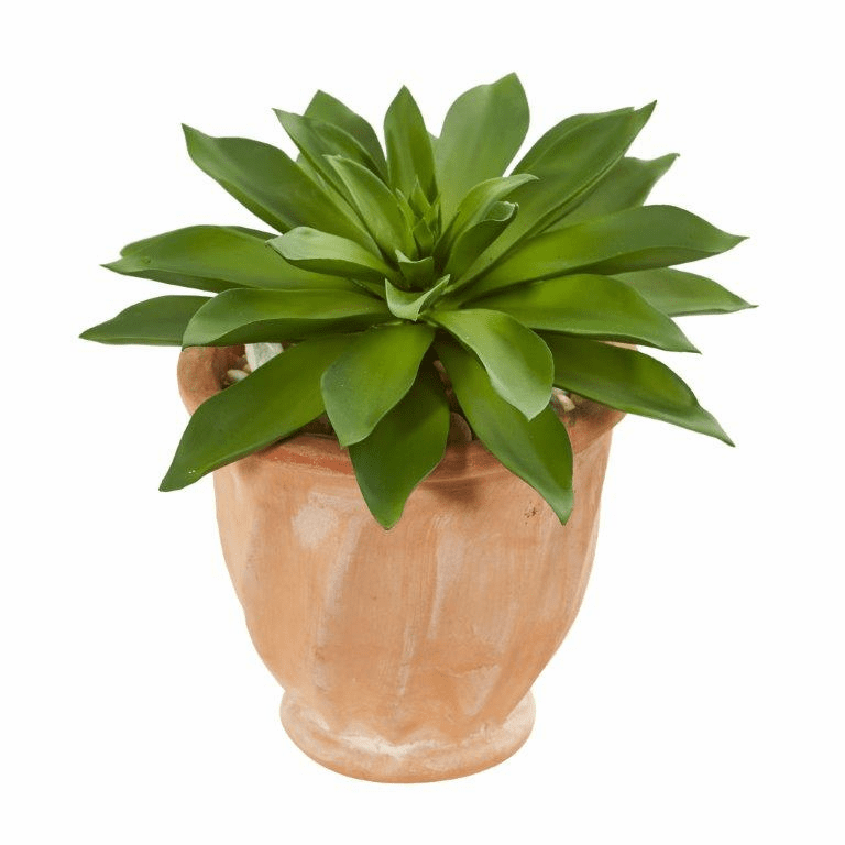 "11"" Giant Succulent Artificial Plant in Terra Cotta Planter"