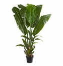 Giant Travelers Palm Artificial Tree - N/A