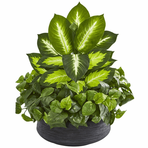 "20"" Golden Dieffenbachia & Pothos Artificial Plant in Black Planter"