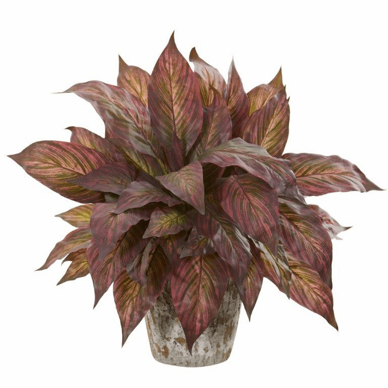 """20"""" Green Burgundy Musa Leaf Artificial Plant in Weathered Oak Planter"""