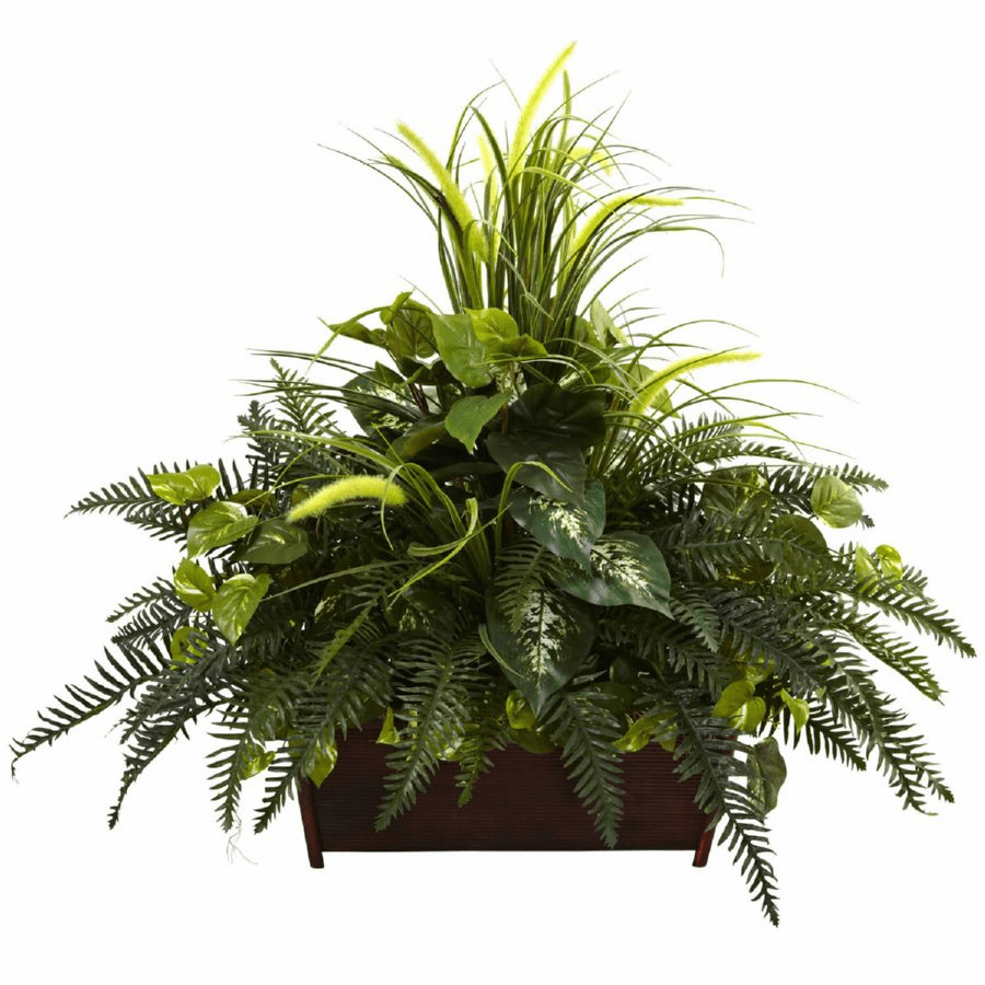 """Large 36"""" Mixed Grass & River Fern with Wood Planter"""