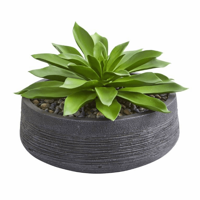 "10"" Large Succulent Artificial Plant in Decorative Bowl"