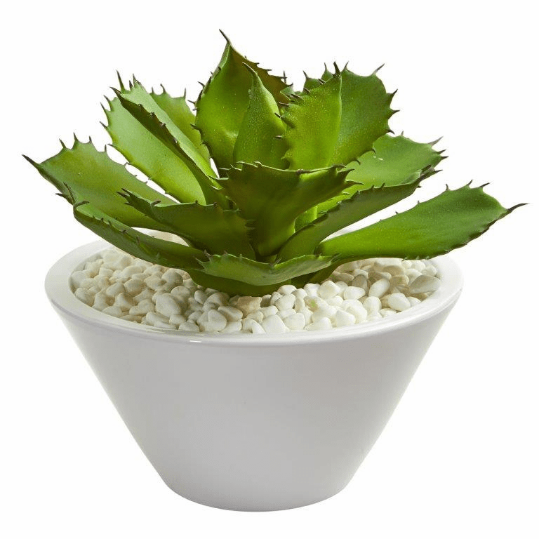 "11"" Large Succulent Artificial Plant in White Bowl"