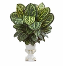 "33"" Maranta Artificial Plant in White Urn"