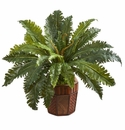 Marginatum Artificial Plant in Bamboo Finished Planter - N/A