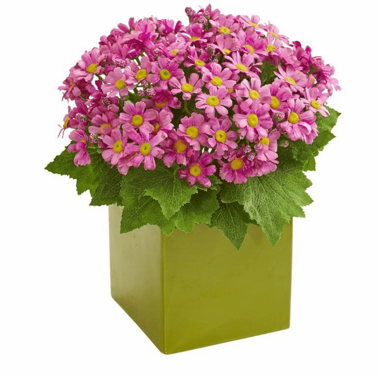 "11"" Mauve Daisy Artificial Arrangement in Green Vase"