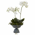 "15"" Mini Dendrobium with Metal Vase"