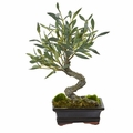 "13"" Mini Olive Artificial Bonsai Tree"