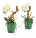 """11"""" Mini Phalaenopsis Orchid Artificial Arrangement in Green Planter (Set of 2) - N/A"""