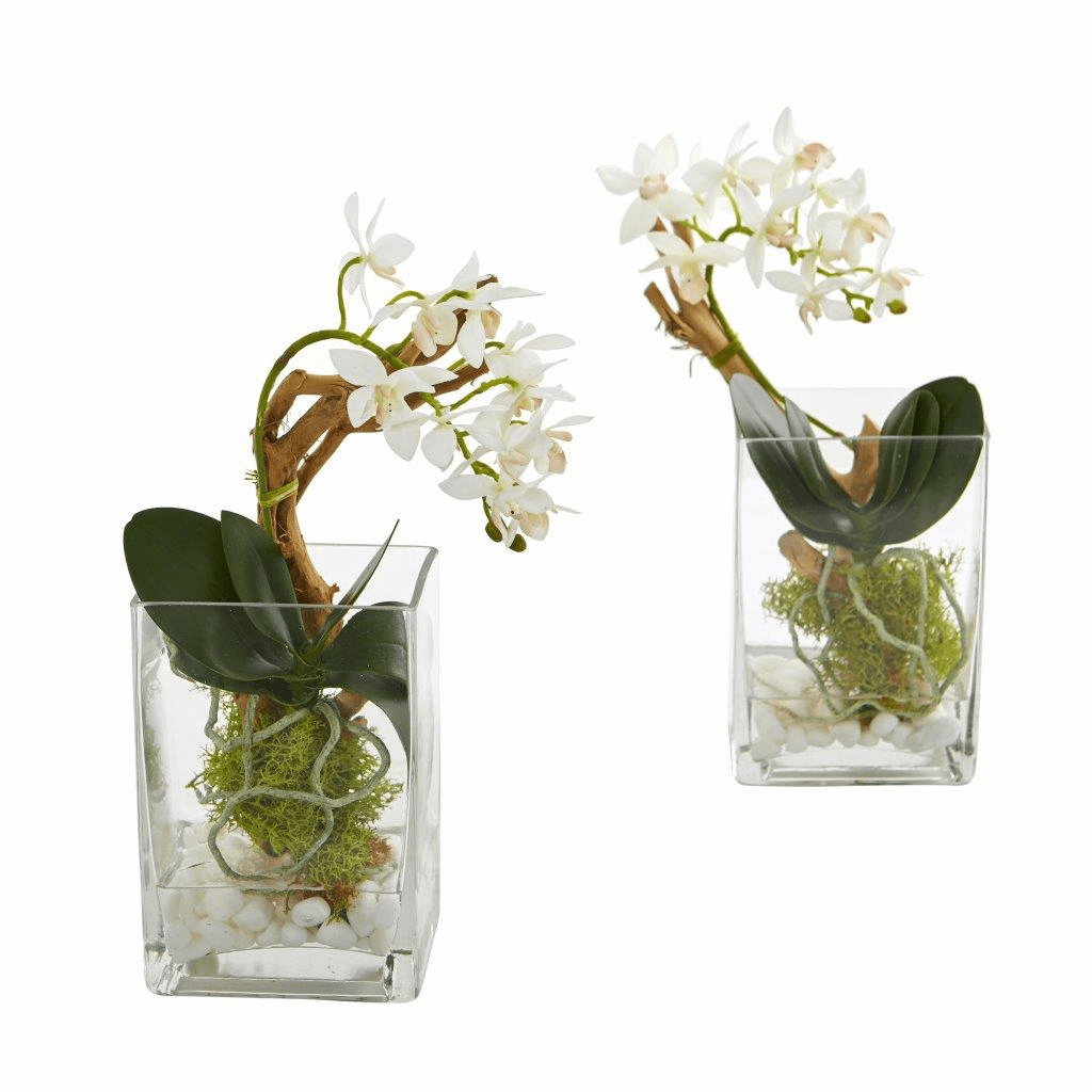 "11"" Mini Phalaenopsis Orchid Artificial Arrangement (Set of 2)"
