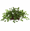 "14"" Mix Stephanotis Artificial Plant in Decorative Planter"