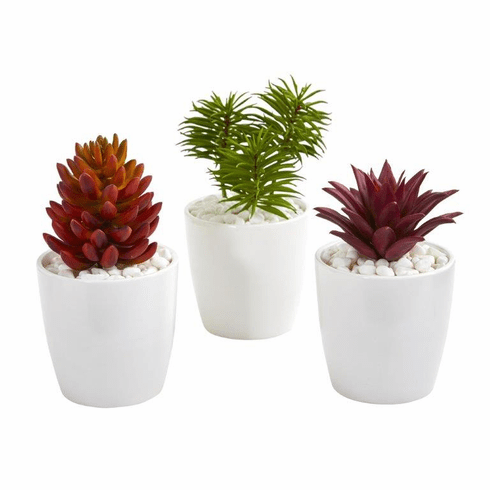 Mixed Succulent Artificial Plant in White Vase (Set of 3)