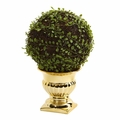 "16"" Mohlenbechia Ball Artificial Topiary in Gold Urn"