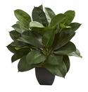 "23"" Oak Ficus Artificial Plant"