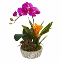"""14"""" Orchid, Bromeliad and Succulent Artificial Arrangement in Planter - Beauty"""