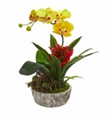 """14"""" Orchid, Bromeliad and Succulent Artificial Arrangement in Planter - Yellow Red"""