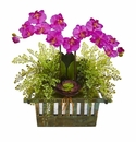 """23"""" Orchid, Succulent and Maiden Hair Artificial Arrangement  - Orchid"""