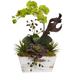 """21"""" Orchid & Succulent Garden with White Wash Planter - Green"""