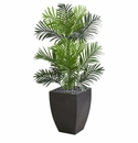 3.5' Paradise Palm Artificial Tree in Black Planter