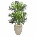 3.5' Paradise Palm Artificial Tree in Sand Colored Planter